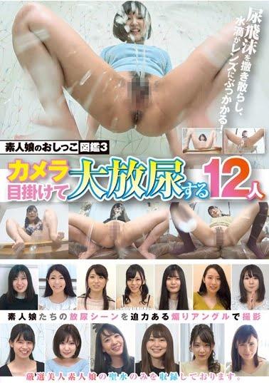 素人娘のおしっこ図鑑3 カメラ目掛けて大放尿する12人ジャケット